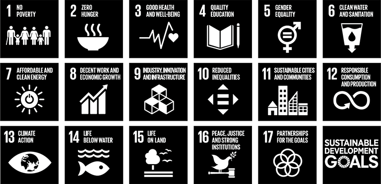icon: 17 Goals to Transform Our World